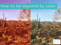 How to Be Inspired by Color
